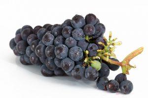 grapes-2032838_640-300×200